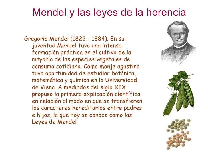 introduccion de las leyes de mendel: