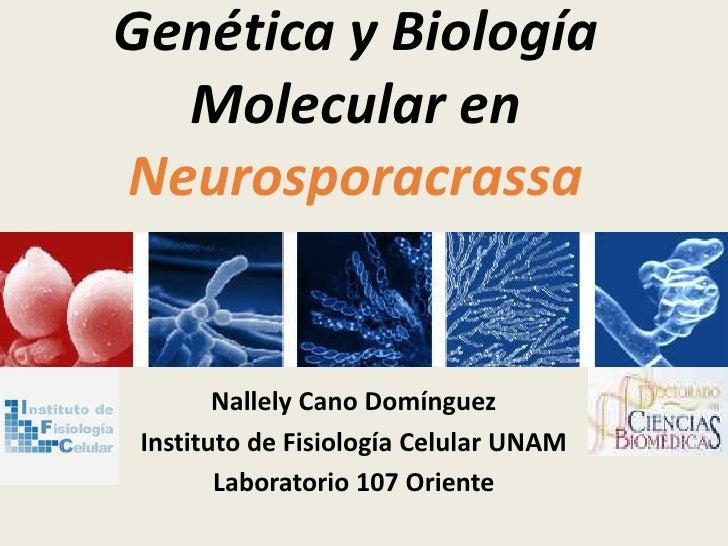 Genética y Biología Molecular de Neurospora