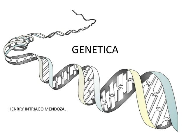 GENETICA  HENRRY INTRIAGO MENDOZA.