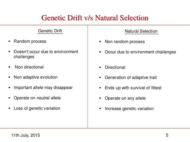 Kinds Of Natural Selection