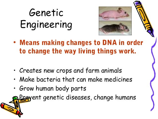 a study of genetic engineering The process of genetic engineering is not a simple task, it requires complex machinery and innovative minds since farming began, humans have been selectively breeding different plants.