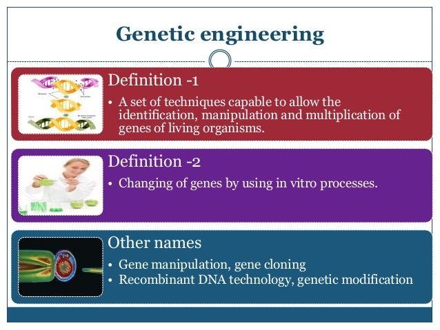 genetic engineering poses a number of Genetic engineering: a serious threat to human society spring 2011 considering another side essays genetic engineering has become a powerful tool in many different fields genetically engineered organisms pose lethal and economic risks to human society.
