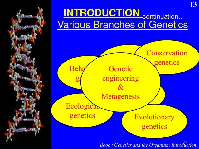 genetics is the future of medicine essay History of the dna and forensics criminology essay  the deciphering of its structure and the decoding of its genetic information our understanding of the .