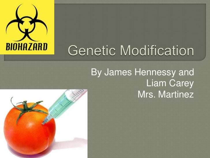 Genetic Modification<br />By James Hennessy and <br />Liam Carey <br />Mrs. Martinez <br />