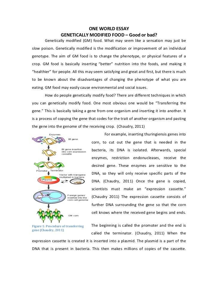 Help on dissertation 2 0