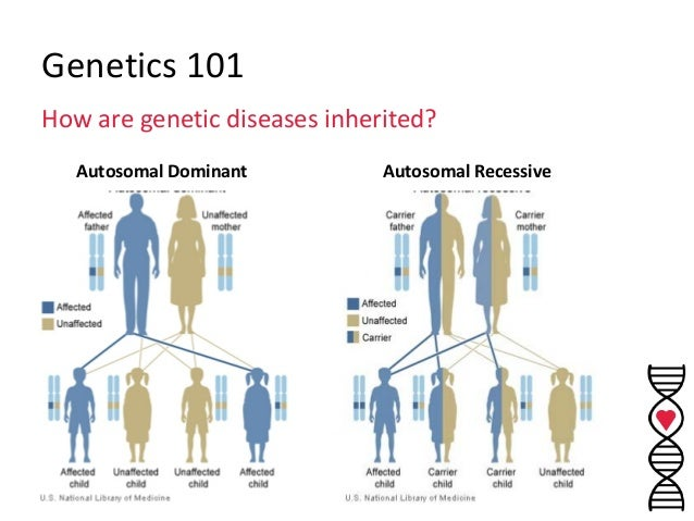 What are genetically inherited diseases?