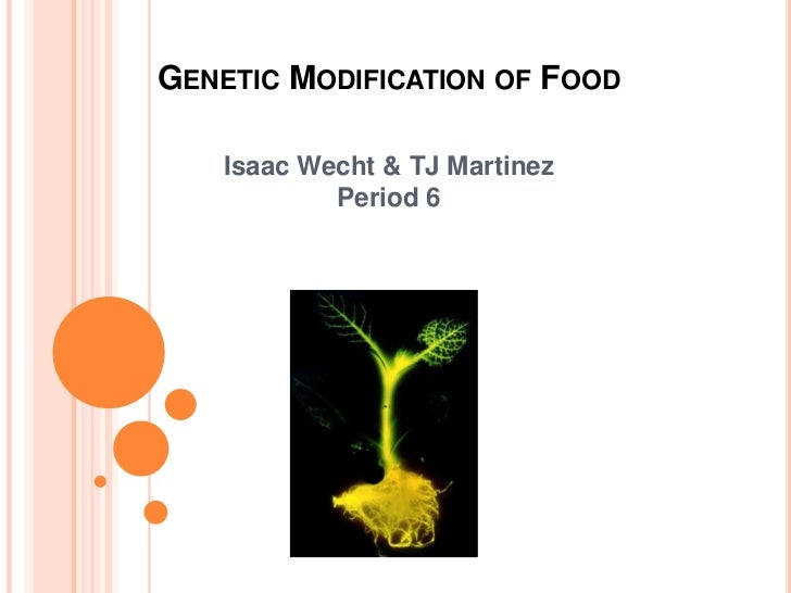 Genetic Modification of Food<br />Isaac Wecht & TJ Martinez <br />Period 6<br />