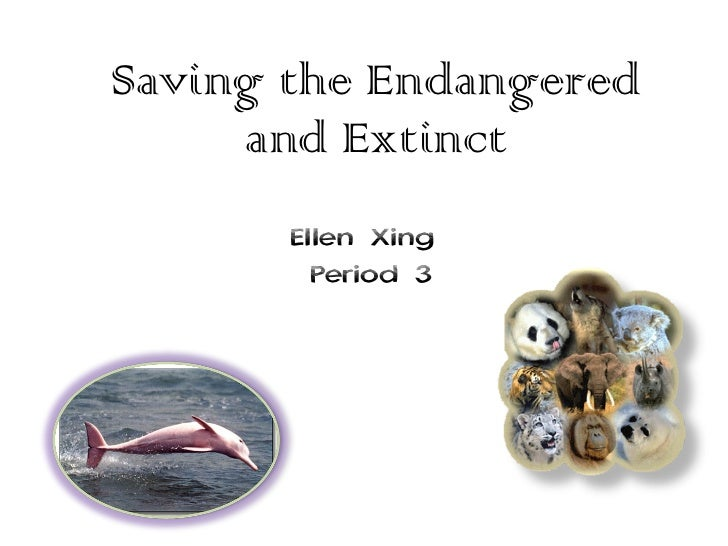 Saving the Endangered and Extinct Ellen Xing  Period 3