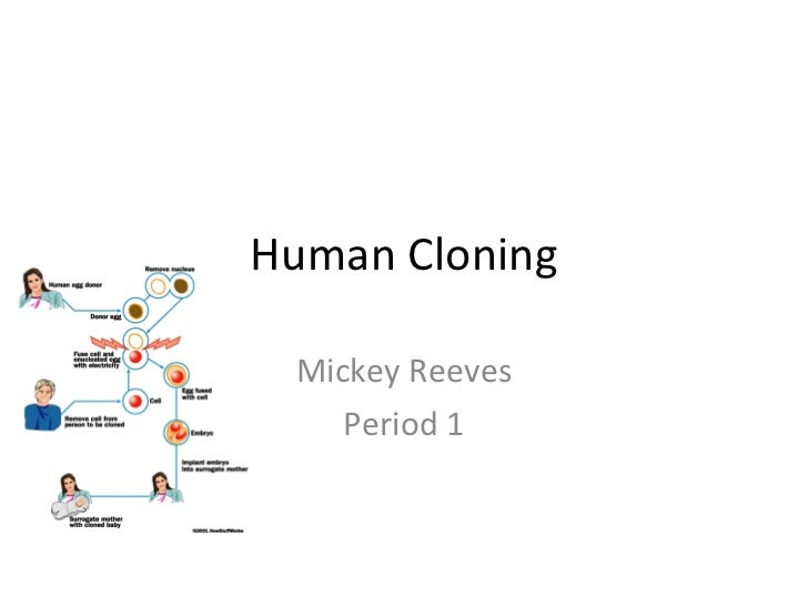Human Cloning Mickey Reeves Period 1