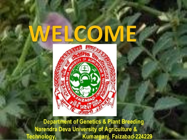 Department of Genetics & Plant BreedingNarendra Deva University of Agriculture &Technology, Kumarganj, Faizabad-224229
