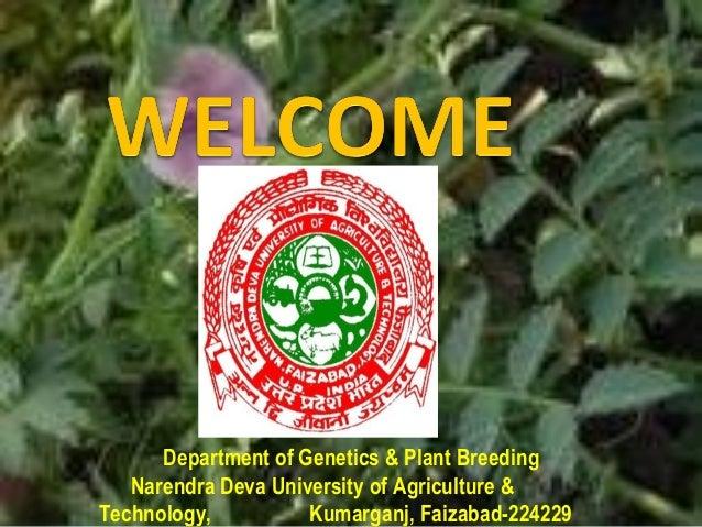 Genetics and plant breeding seminar