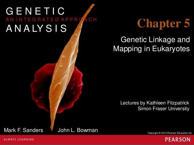 Genetics chapter 5 part 1