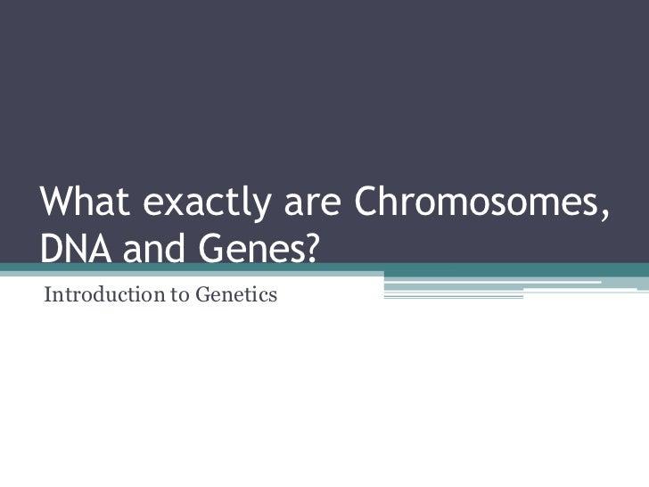 Genetics introduction