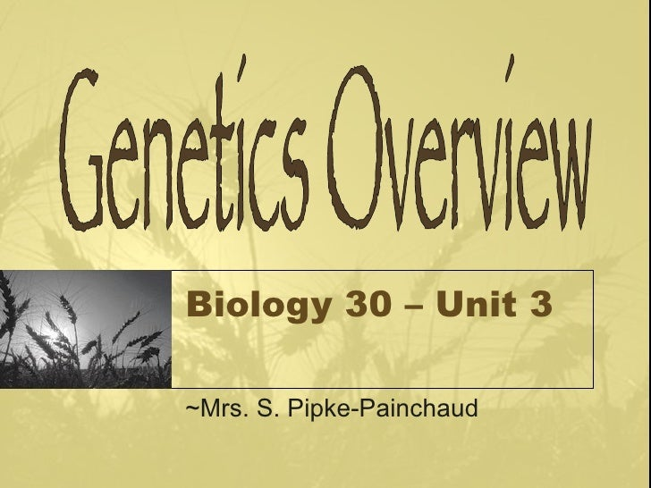 Genetics Intro Powerpoint