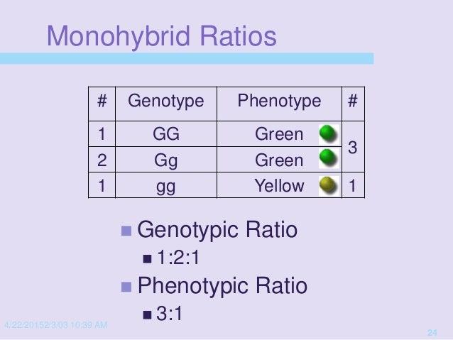 Genetics presentation '15