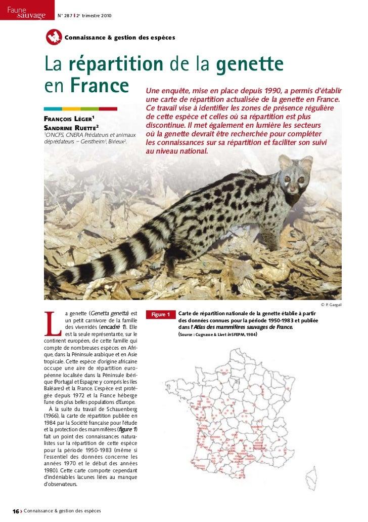 N° 287 ❙ 2e trimestre 2010                      Connaissance & gestion des espèces             La répartition de la genett...