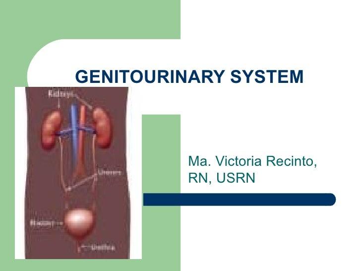 GENITOURINARY SYSTEM Ma. Victoria Recinto, RN, USRN
