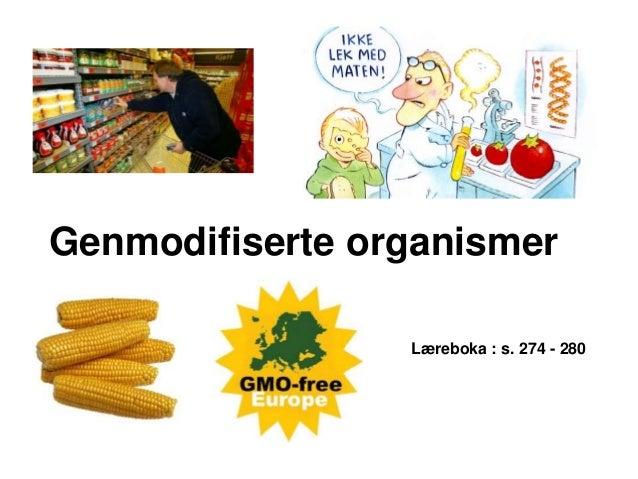 Genmodifiserte organismer                 Læreboka : s. 274 - 280