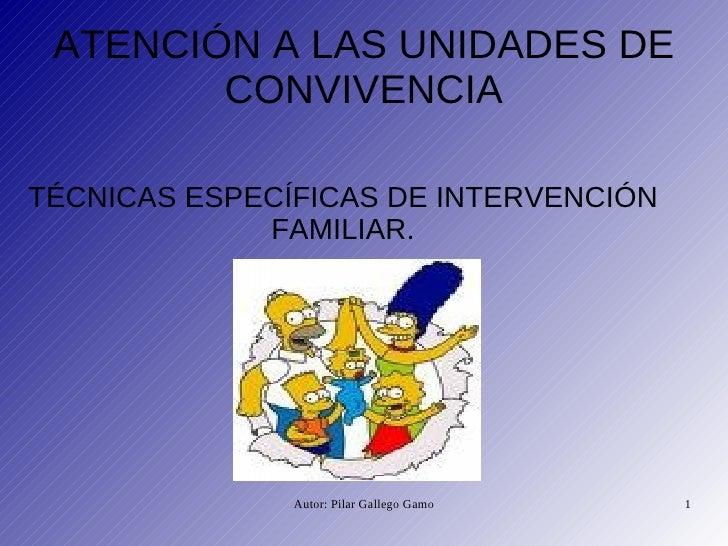TÉCNICAS ESPECÍFICAS DE INTERVENCIÓN FAMILIAR. ATENCIÓN A LAS UNIDADES DE CONVIVENCIA