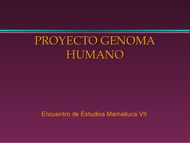 PROYECTO GENOMAPROYECTO GENOMA HUMANOHUMANO Encuentro de Estudios Mamalluca VII
