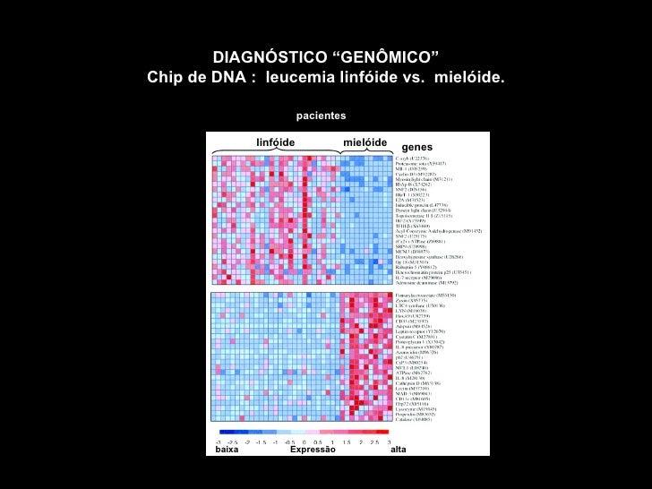 El ADN:Genes y Cromosomas Objetivos del Proyecto Genoma Humano