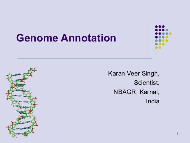 Genome Annotation Karan Veer Singh, Scientist. NBAGR, Karnal, India  1