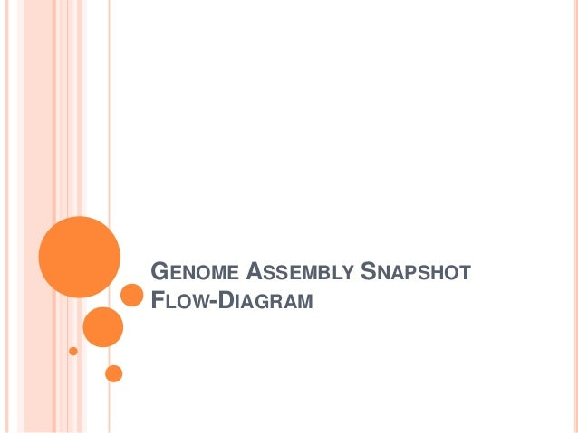 Genome assembly snapshot flow diagram