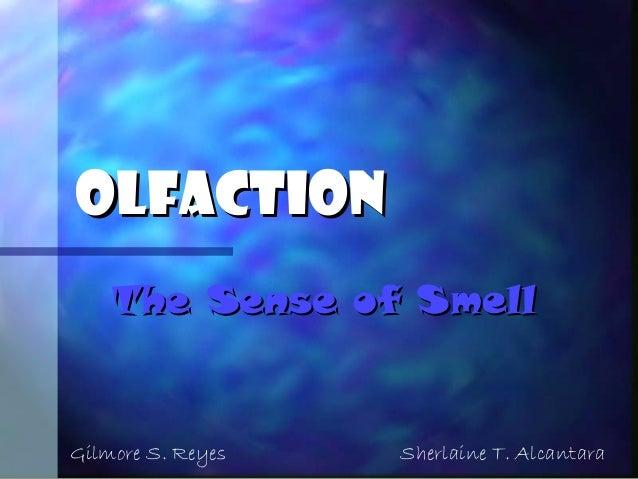 OlfactionOlfaction The Sense of SmellThe Sense of Smell Gilmore S. Reyes Sherlaine T. Alcantara