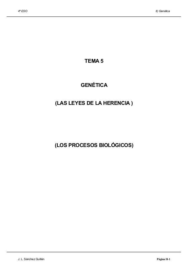 4º ESO II) Genética TEMA 5 GENÉTICA (LAS LEYES DE LA HERENCIA ) (LOS PROCESOS BIOLÓGICOS) J. L. Sánchez Guillén Página II-1