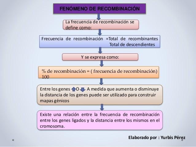FENÓMENO DE RECOMBINACIÓN La frecuencia de recombinación se define como: Frecuencia de recombinación =Total de recombinant...