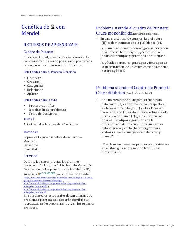 Guía – Genética de acuerdo con Mendel I Problema    usando  el  Cuadro  de  Punnett:   Cruce  monohíbrido ...