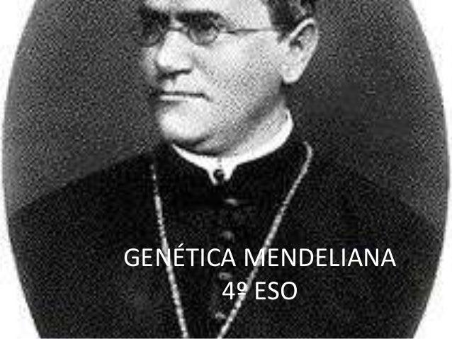 GENÉTICA MENDELIANA       4º ESO