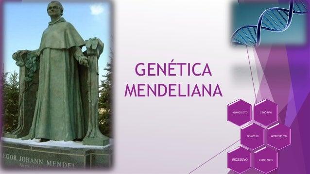 Genética mendeliana básica