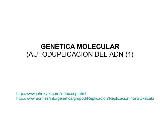 GENÉTICA MOLECULAR (AUTODUPLICACION DEL ADN (1)  http://www.johnkyrk.com/index.esp.html http://www.ucm.es/info/genetica/gr...