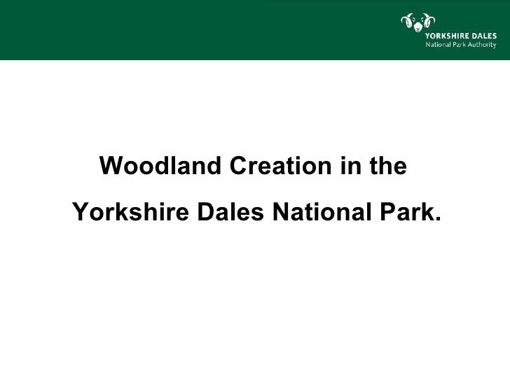 Woodland Creation in theYorkshire Dales National Park.