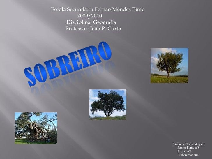 Escola Secundária Fernão Mendes Pinto   2009/2010   Disciplina: Geografia   Professor: João P. Curto Trabalho Realizado po...