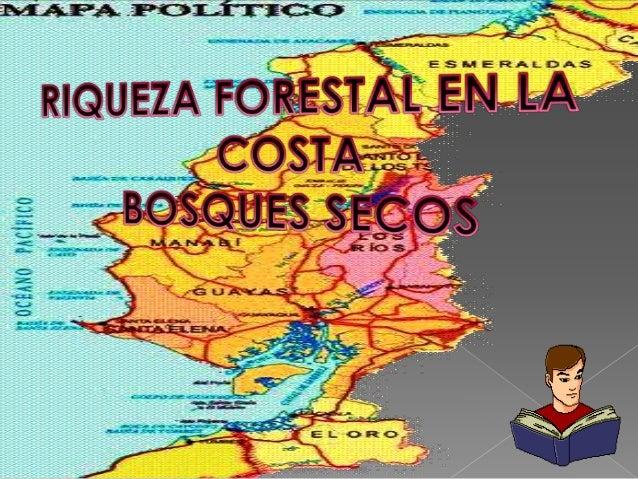ESPECIE     LUGAR               UTILIDAD                 IMAGENAjo         Loja, Guayas, Los   •   Carpintería            ...