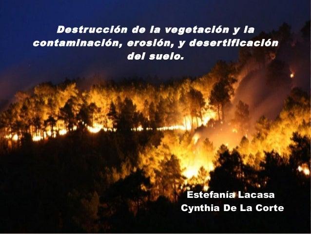 Destr ucción de la ve getación y lacontaminación, erosión, y deser tificación                del suelo.                   ...