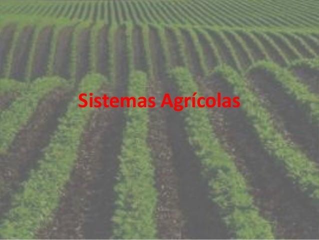 Geografia sistemas agrícolas em