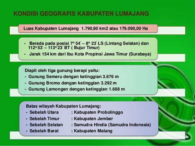 KONDISI GEOGRAFIS KABUPATEN LUMAJANG  Luas Kabupaten Lumajang 1.790,90 km2 atau 179.090,00 Ha  - Berada pada posisi 7o 54'...