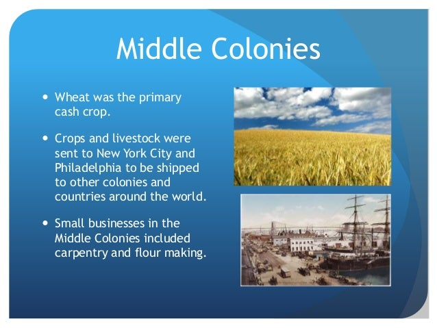 New York Colonies Natural Resources