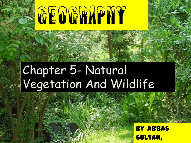 GEOGRAPHYChapter 5- NaturalVegetation And Wildlife                   By Abbas                   Sultan,