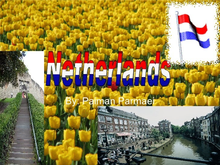 By: Paiman Parmaei Netherlands