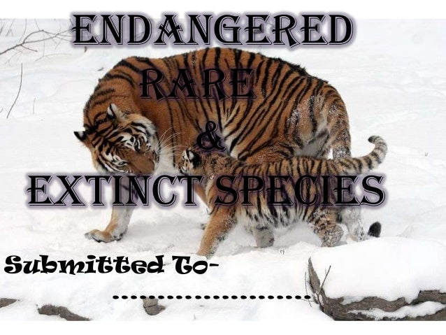 Endangered Rare & Extinct Species Submitted To………………….