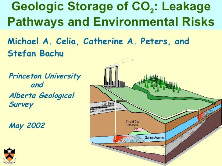Geologic Storage of CO 2 : Leakage Pathways and Environmental Risks <ul><li>Michael A. Celia, Catherine A. Peters, and Ste...