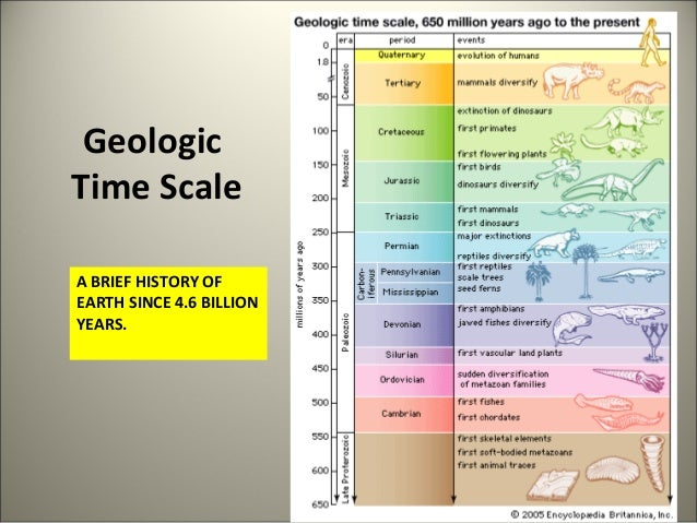 Geologic time scale and relative dating laboratory 5