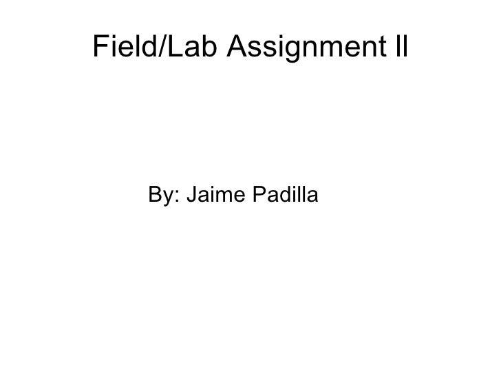 Field/Lab Assignment ll <ul><li>  By: Jaime Padilla </li></ul>