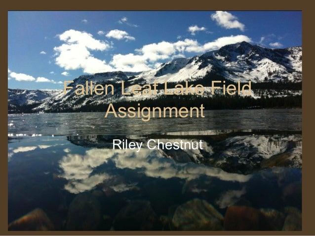 Fallen Leaf Lake FieldAssignmentRiley Chestnut