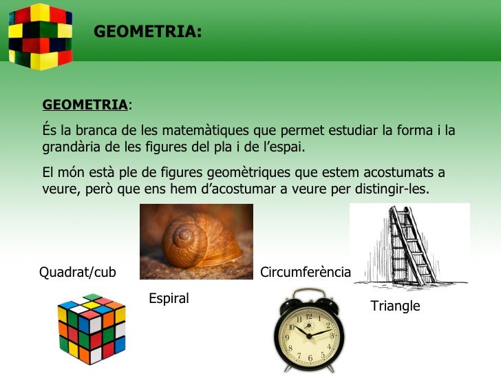 Geometria rectes,angles i polígons