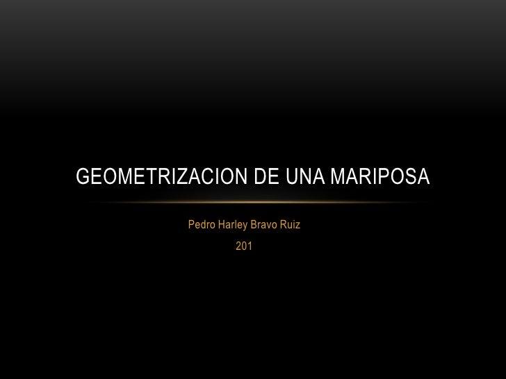 GEOMETRIZACION DE UNA MARIPOSA         Pedro Harley Bravo Ruiz                  201